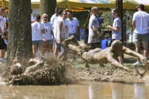 Bremenfest Mud Volleyball
